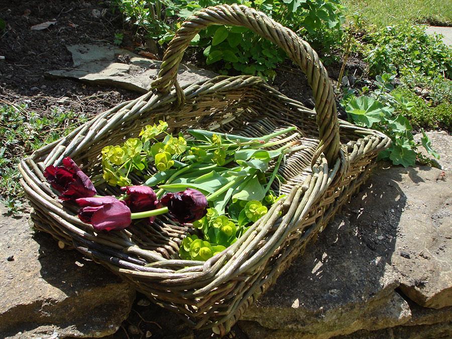 Organic Willow Garden Trug Natural Simplicity